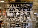 Warhammer Fantasy - Echsenmenschen Stegadon Gußrahmen