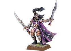 Warhammer Fantasy - Dunkelelfen Hochgeborener mit 2 Handwaffen