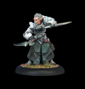 Warmachine - Retribution of Scyrah Garryth
