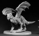RE_Swamp Dragon