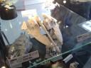 Forge World - Eldar Lynx