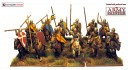Conquest Games - Norman Regiment
