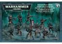 Warhammer 40.000 - Dark Eldar Krieger