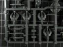 Warhammer Fantasy - Hochelfen Phönixgarde
