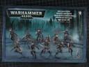 Warhammer 40.000 - Dark Eldar Hagashin