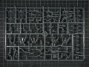 Warhammer 40.000 - Dark Eldar Kabalenkrieger