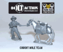 Bolt Action - Chindit Mule Team