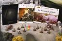 Zenit Miniatures - Arbonte Menace