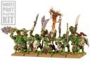 Warhammer Fantasy - Orks & Goblins Wildorks