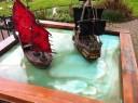 Freebooter Wasserplatte Foto 6