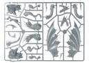 Warhammer Fantasy - Drachengussrahmen