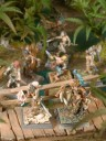 Freebooters Fate - Amazons & Pirates