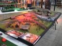Internationale Modellbautage Erfurt