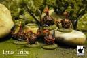 DG_ignis-tribe-shot