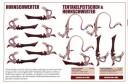 Warhammer 40.000 - Tyraniden Bitz