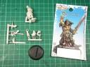 Cool Mini Or Not - Barbarian King