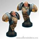 Celtic Warrior Bust