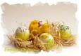 Das Team des Brückenkopfs wünscht Euch allen ein frohes und entspanntes Osterfest!