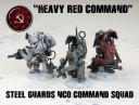 DS_SSU_Steel_Guard_NCO_1