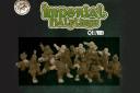 Imperial Halfling Fantasy Football Team
