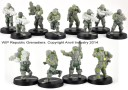 Afterlife Republic Grenadiers squad