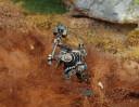Titan Forge Zwerge Anvilborn Warriors 12