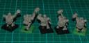 Titan Forge Zwerge Anvilborn Warriors 9