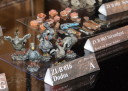 Tactica 2015 Freebooter's Fate 8