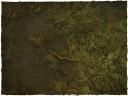 Deep Cut Studio_Wargames Terrain Mat Swamp 3