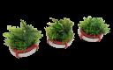 Systeme Gaming_Futura City Circular Planters 1