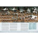Games Workshop_Warhammer 40.000 Armies of Expansion- Tau Empire Painting Guide 3