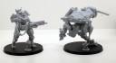 White_Dragon_Marine_Tactical_Unit_2