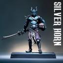 Silber Horn