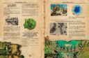 FG_Firelock_Games_Blood_and_Plunder_Regelbuch_Preview_4