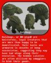 KG_Krakon_Games_Sci_Fi_Frills_and_Fauna_Miniatures_Kickstarter_7