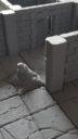 RPG_Rocket_Pig_Games_Tilescape_Dungeons_Kickstarter_4