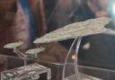 SPIEL_2016_Star_Wars_Armada_4