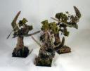WW_Weekly_Watchdog_Forest_Spirit_Army_20
