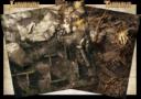 MG_Mythic_Battles_Pantheon_Kickstarter_18