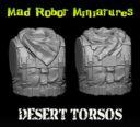 Desert Torsos