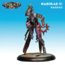 DA Dark Age Shadow Caste Naedrae