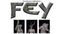 Fey Neue Kickstarter 01