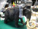 EL Elladan Riese Auf Mammut 4