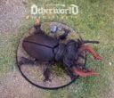 Otherworld Neue Releases 06