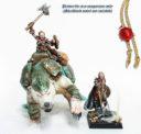 SW Shieldwolf Shieldmaiden Ice Warbear Cavalry 3