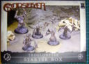 Review-Godslayer-01_TrogStarter_Packung