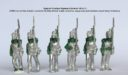 Perry Miniatures Neue Greens 01