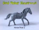 MRM Horse 02