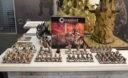 SPIEL 2017 Para Bellum Conquest 3