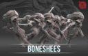 Artel BonescheesPreview